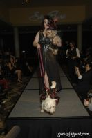 SKYBARK Pre Westminster Red Carpet #1