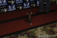 SKYBARK Pre Westminster Red Carpet #2