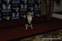 SKYBARK Pre Westminster Red Carpet #59