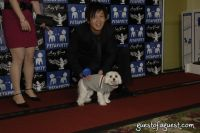 SKYBARK Pre Westminster Red Carpet #100