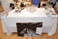 Amaryllis Equine Rescue Benefit at Intermix #83