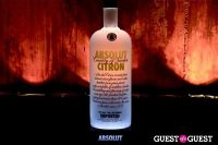 Absolut Vodka Appreciation. #135
