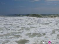 Surf's Up #16