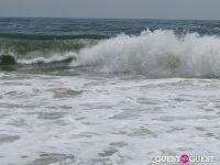 Surf's Up #26