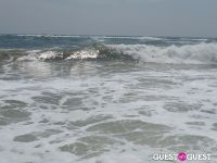 Surf's Up #29
