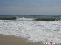 Surf's Up #31