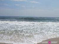 Surf's Up #32