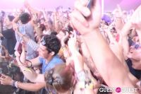 Electric Zoo 2010 #3