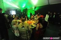 Central Park Conservancy's Green Ball #3