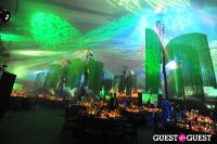 Central Park Conservancy's Green Ball #166