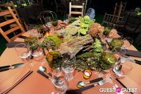 Central Park Conservancy's Green Ball #185