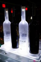 Belvedere Launch Party #4