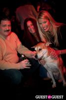 Beth Ostrosky Stern and Pacha NYC's 5th Anniversary Celebration To Support North Shore Animal League America #20