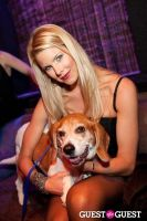 Beth Ostrosky Stern and Pacha NYC's 5th Anniversary Celebration To Support North Shore Animal League America #95