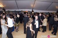Brooklyn Kindergarten Society Annual Yuletide Ball #292