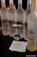 Belvedere Vodka Bartender's Dream Job Finals #166