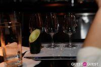 Belvedere Vodka Bartender's Dream Job Finals #354