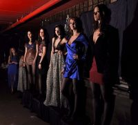 DEIVIE by Christina Mannino Fall 2011 Presentation #2
