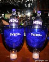 Svedka and The Eldridge #5