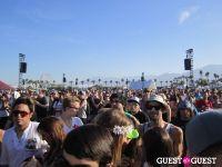 Coachella 2011 #3