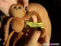 Baby Monkey goes to Indio #9