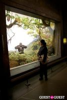 AMNH Museum Dance #144