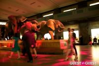 AMNH Museum Dance #154
