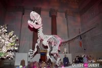 AMNH Museum Dance #163