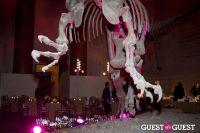 AMNH Museum Dance #164