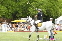 Veuve Clicquot Polo Classic at New York #27