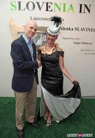 Slovenia in US Lipizzaner horses by Alenka Slavinec #45
