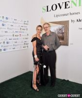 Slovenia in US at Gallery MC #31