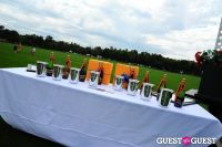 The 27th Annual Harriman Cup Polo Match #229