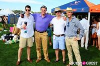 The 27th Annual Harriman Cup Polo Match #291
