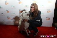 The Friends Of LA Animal Shelters Hosted By K9s Only West #77
