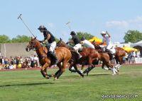 Veuve Clicquot Polo Classic #18