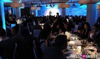 DIA Art Foundation 2011 Fall Gala #88
