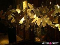 Le Cabinet de Curiosités Private Tour #24