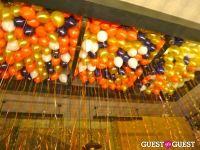 Asellina One Year Anniversary #10