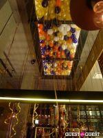 Asellina One Year Anniversary #40