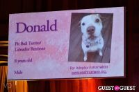Fashion For Paws 2012 II #66