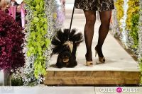 Fashion For Paws 2012 II #80