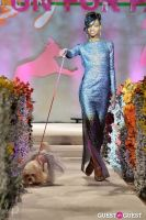 Fashion For Paws 2012 II #87