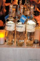 Tanteo Tequila Honors Mexican Artists in NYC #21