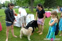Paws Across The Hamptons Dog Walk To Benefit Southampton Hospital & Animal Shelter Foundation #31
