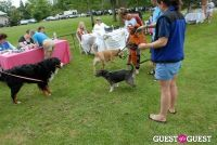 Paws Across The Hamptons Dog Walk To Benefit Southampton Hospital & Animal Shelter Foundation #35