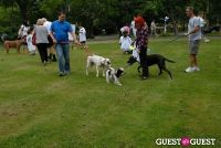 Paws Across The Hamptons Dog Walk To Benefit Southampton Hospital & Animal Shelter Foundation #127