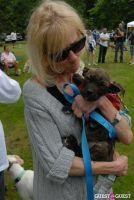 Paws Across The Hamptons Dog Walk To Benefit Southampton Hospital & Animal Shelter Foundation #132