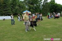 Paws Across The Hamptons Dog Walk To Benefit Southampton Hospital & Animal Shelter Foundation #138