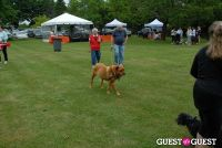 Paws Across The Hamptons Dog Walk To Benefit Southampton Hospital & Animal Shelter Foundation #141